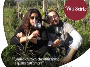 Format-aziende_Vini-Scirto_FACEBOOK-535x400